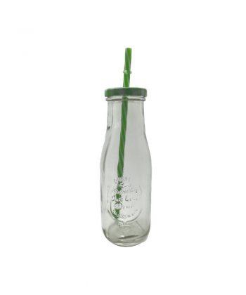 Bottiglia Bibita cc 500 Verde