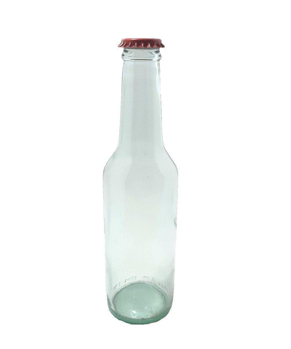 Bottiglia Bibita cc 275 1