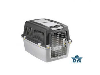 Trasportino IATA