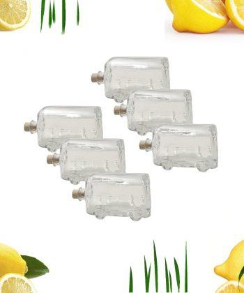 Bottiglia autobus cc 200 6 pezzi